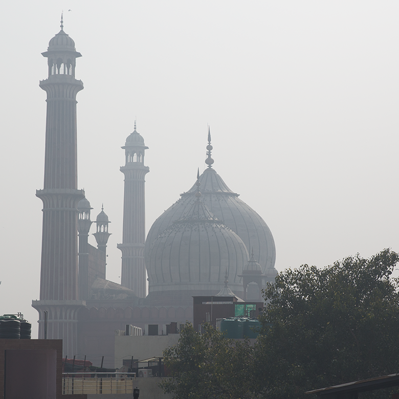 Old Delhi from the rooftop